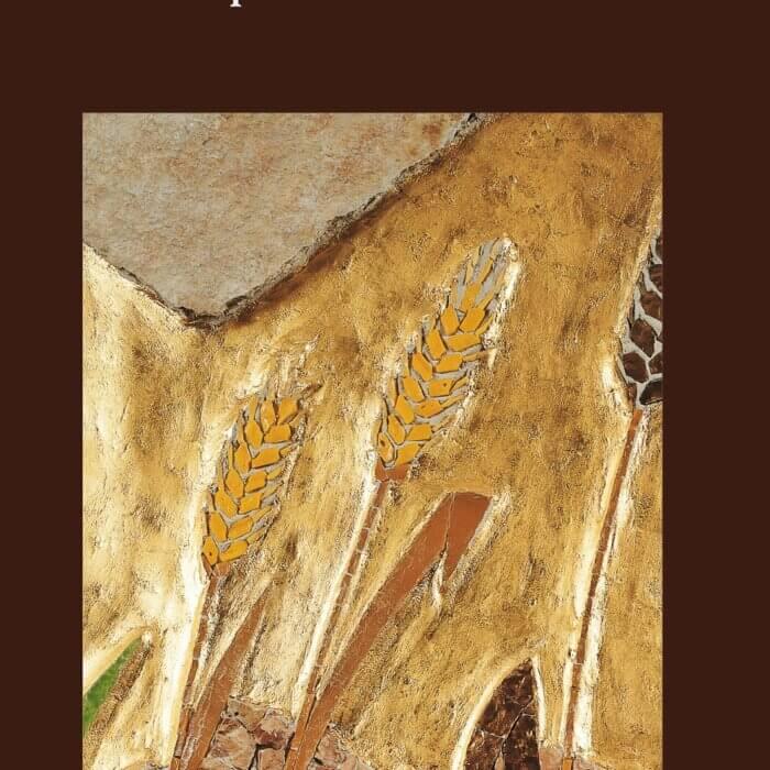 Copertina del libro Maranathà