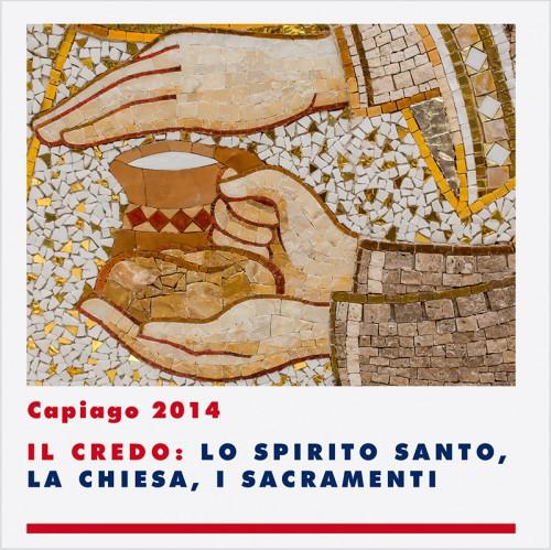 Convegno Capiago 2014 3